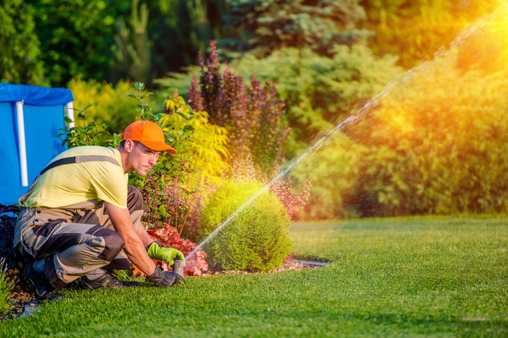 Why landscaping businesses use FSM to optimise resources