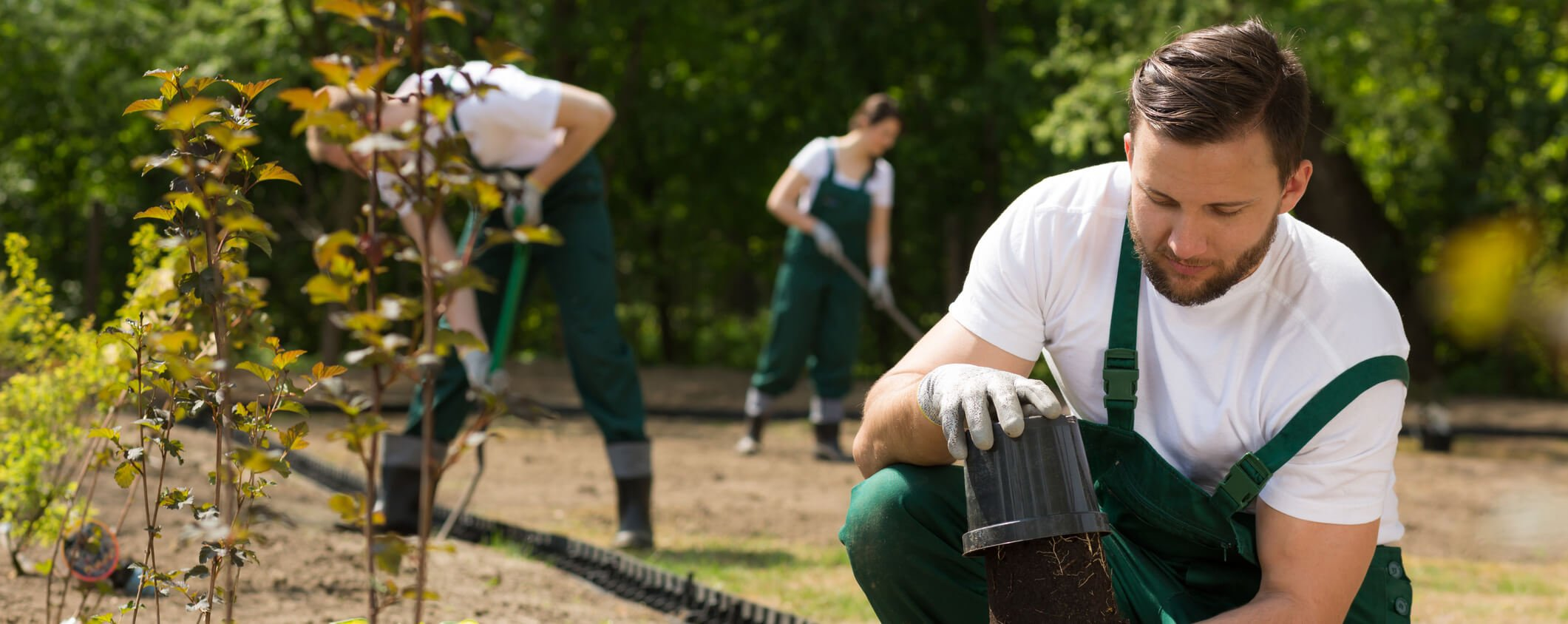 Key reasons to use field management software for open spaces management
