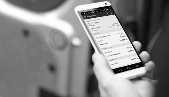 QuickBooks on phone-bw