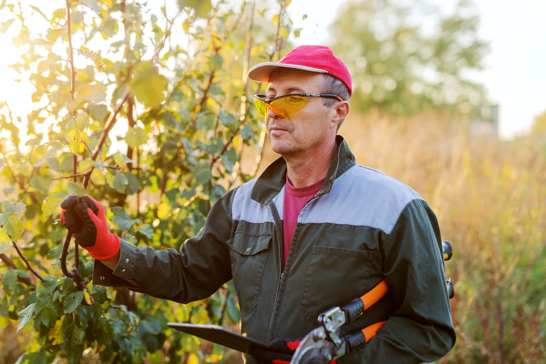 How workforce management software is changing the landscaping industry