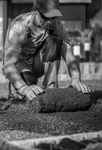 Landscaper laying grass_crop 1_BW