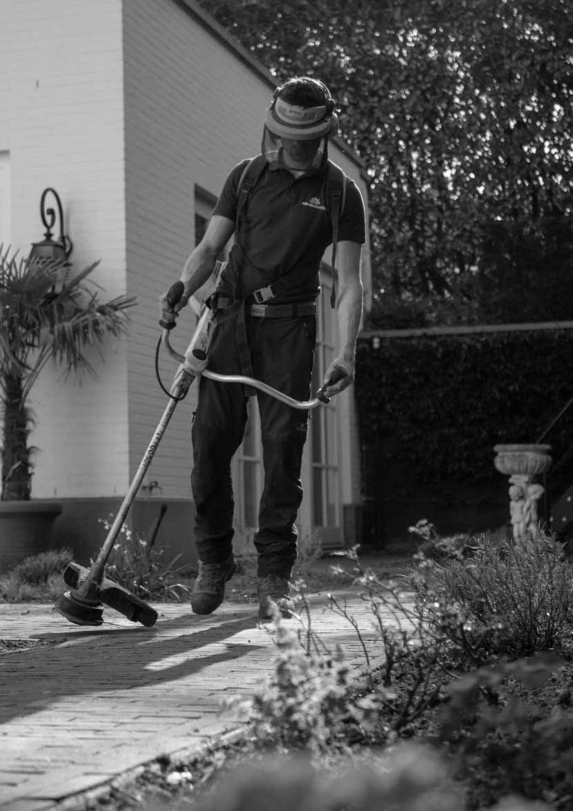 Landscaper trimming the edges_crop_BW