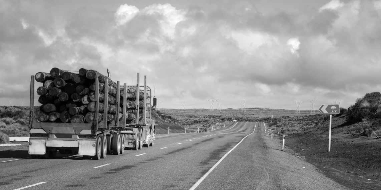Logging truck_crop_BW