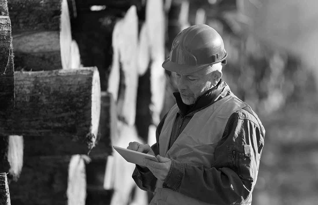 Man checking logs_BW_sml